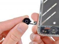 Как самостоятельно устранить проблемы с кнопкой Home у iPhone
